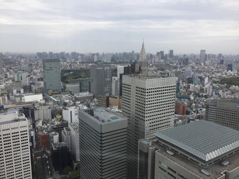 Япония. Сакура-2018. Не бойтесь ехать!