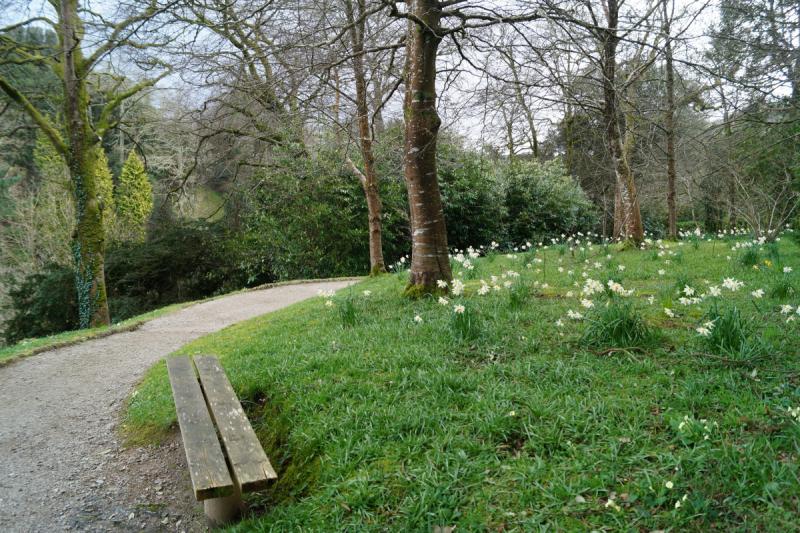 Великобритания в марте: Корнуолл, Бристоль и немного Лондона