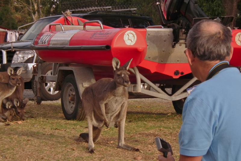 Западная Австралия - 6 недель