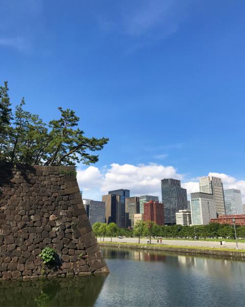 Япония 19-25 июня 2018
