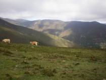 Еще раз про Camino (Испания). Не окончен.