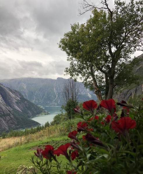 Объять необъятное (по Норвегии на своем авто)