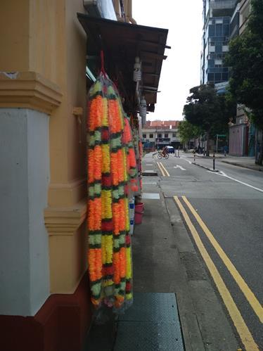 Транзитные сутки в Сингапуре. Май. Адское пекло, индусы и снова адское пекло.