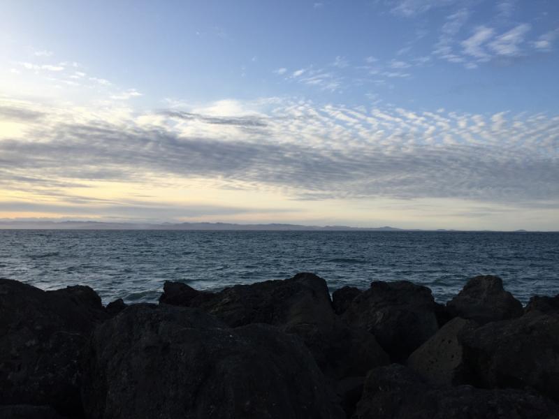 Горы, звери, кино и океан, или как мы подсели на северо-запад