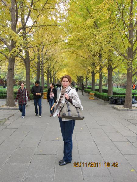 Один экскурсионный день с выездом из Пекина в ноябре. Куда податься?