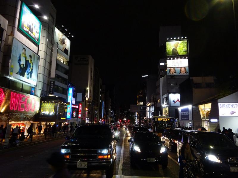 Багряные краски осени (Come back to Japan.)