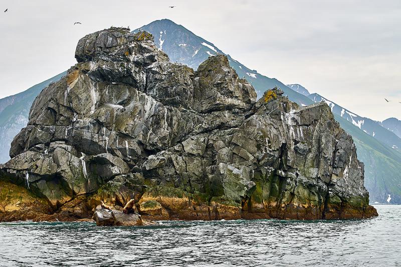 Камчатка морские походы 2018