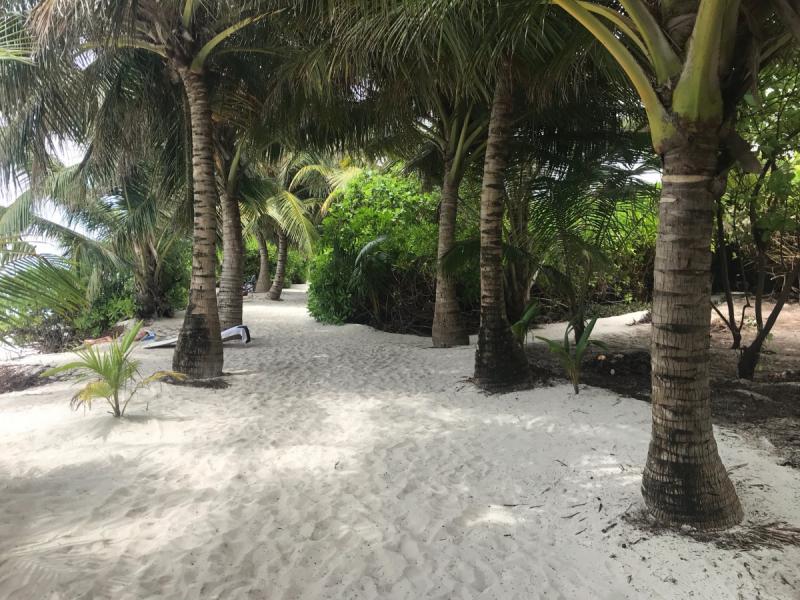 Отчет. Мальдивы самостоятельно(1 -15 ноября 2018)