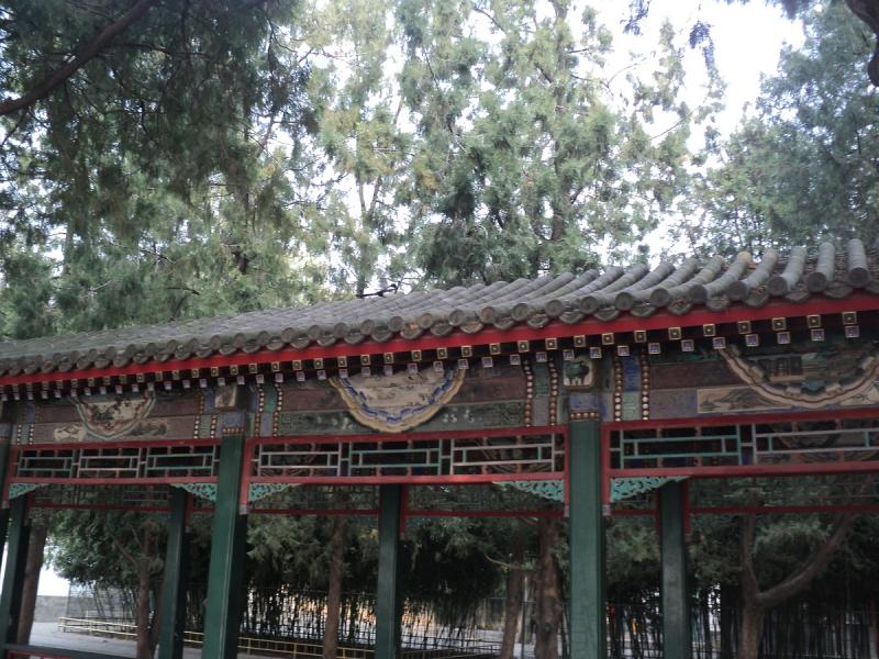 Хромая утка по-Пекински, Сианьские фазаны и Лоянские байки