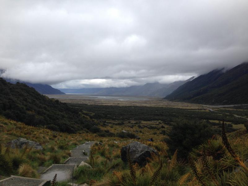 Новая Зеландия ноябрь 2018