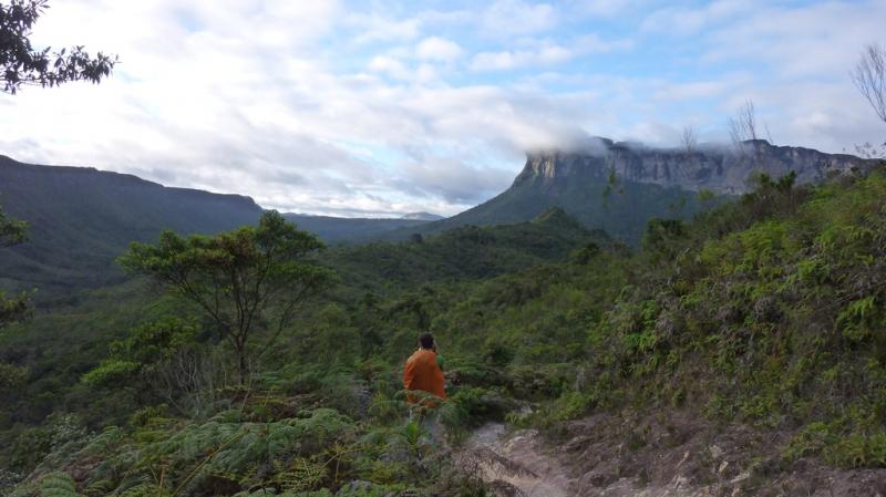 Бразильские приключения 2015