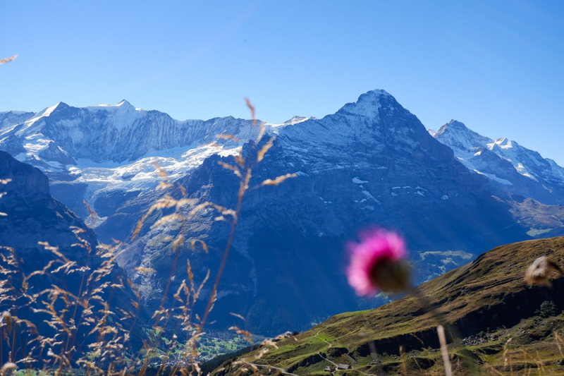 На каком подъёмнике прокатиться в Швейцарии?
