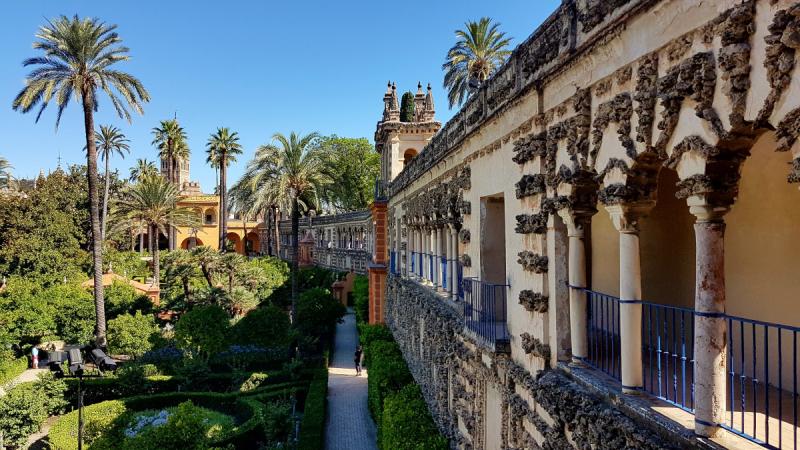 Июль 2017: Малага - Гранада (Альгамбра)- Тропа королей - Севилья - Хересный треугольник - Ронда - Сотогранде - Тарифа - Гибралтар - Тажин