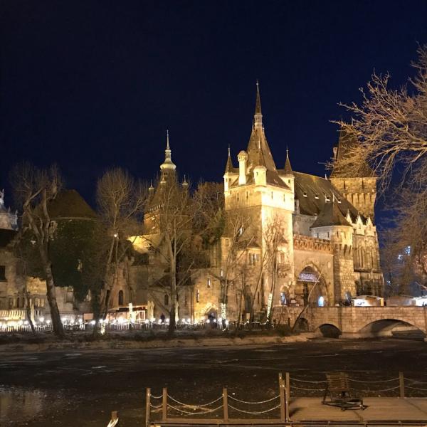 Венгрия - Польша - Словакия // Новый год 2019