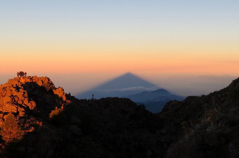 Мексика, в натуре! Зарисовки о природе  (штаты Квинтана Ро и Чиапас, декабрь 2018)