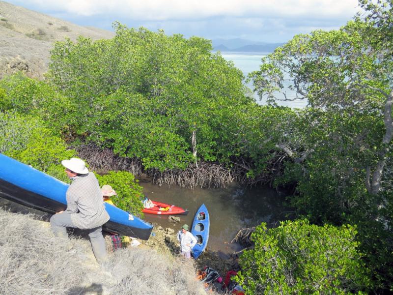 Отчет Водный поход на байдарке Комодо Ринча