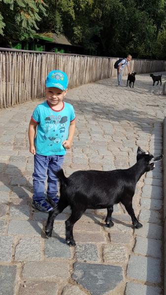 Германия-Испания (Тенерифе)-Бельгия. С детьми к океану. (октябрь 2018)