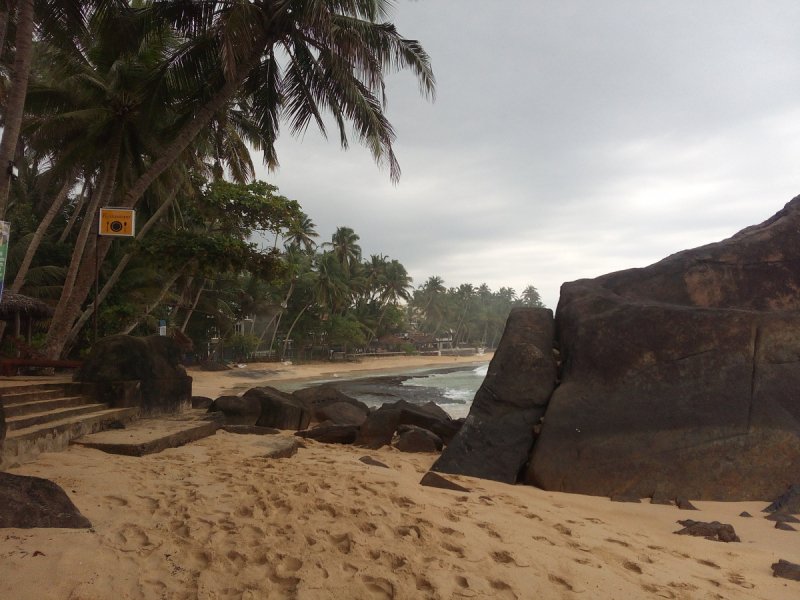 Тепленький ноябрь. Ланка 2018