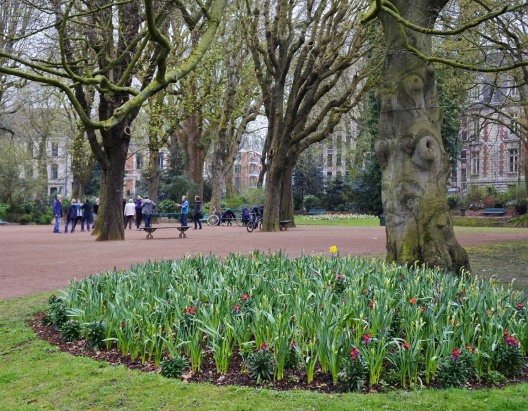 Весна в Стране Басков, Нор-Па-де-Кале и Париже