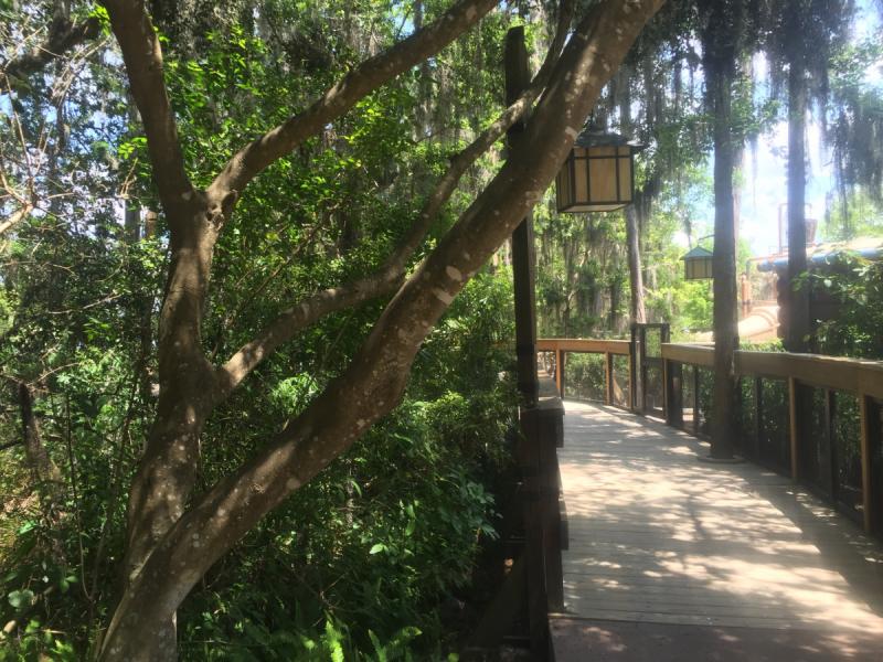 Как я жила две недели в Walt Disney World