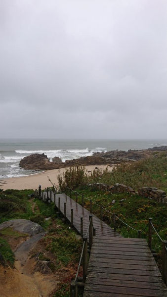 Как мы шли-шли-шли-шли-шли и пришли (Camino portuguese)
