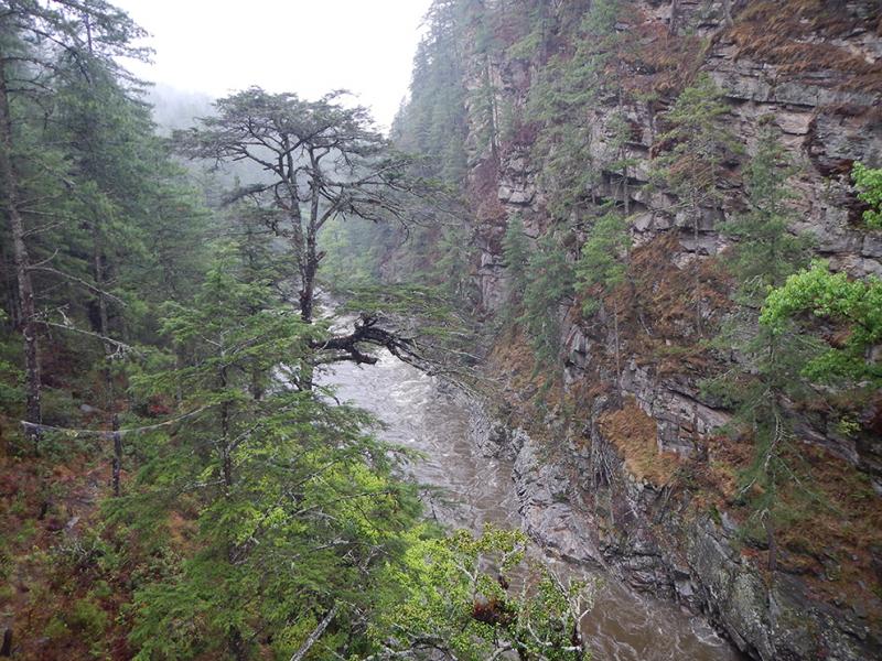 Национальные парки Бутана, джиппинг на майские 2019