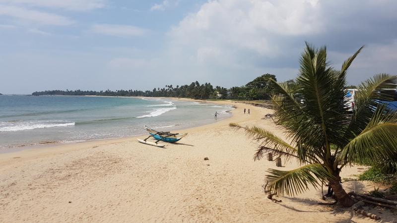 Январь 2018: Канди - Элла - Пляжи - Велигама - Коломбо (машина/мопед/автобус/поезд)