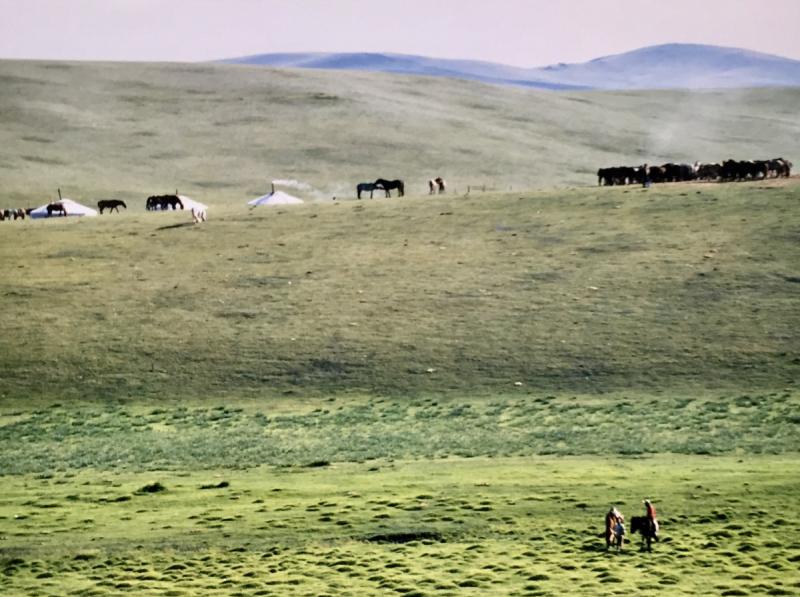 Дела давно минувших дней. Монгольский триллер.