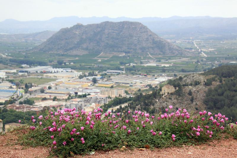 Xàtiva – Sierra de Cazorla - Peniscola 2017