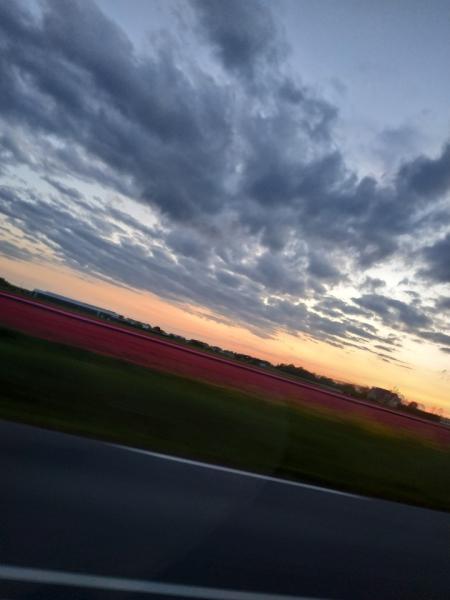 Ранняя весна (РБ-РП-Германия-Нидерланды-Бельгия-Франция и обратно в Россию)