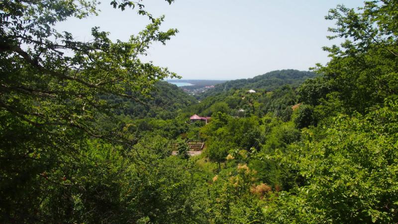 Абхазия:первое знакомство