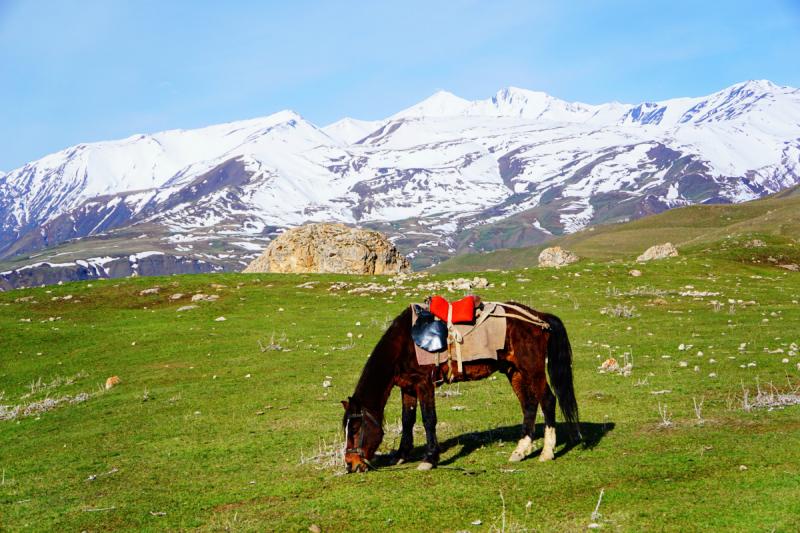 5 девушек на прокатном авто. 2000 км. Большое путешествие по Азербайджану за пределами Баку. Май 2019