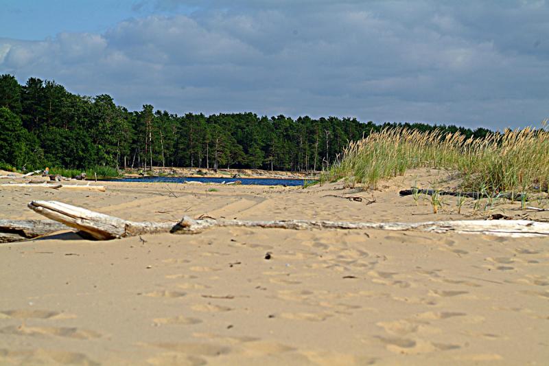 Латвия.Взморье и устье реки Гауи.