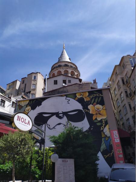 Стамбул. 7 дней. Май 2019.