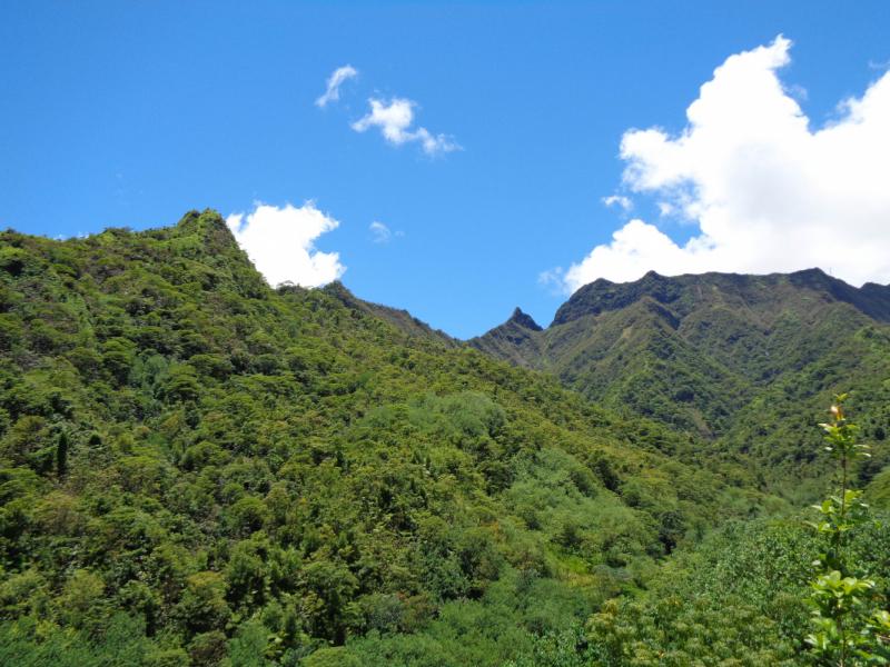 Таити – Моореа – Нуку-Хива, автостоп и треккинг