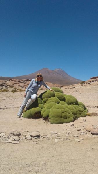 Укусить Южную Америку или День Рождения в @опе мира.(Аргентина-Боливия-Чили-Перу)