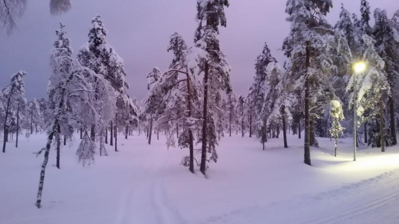 Пять дней зимы в Швеции