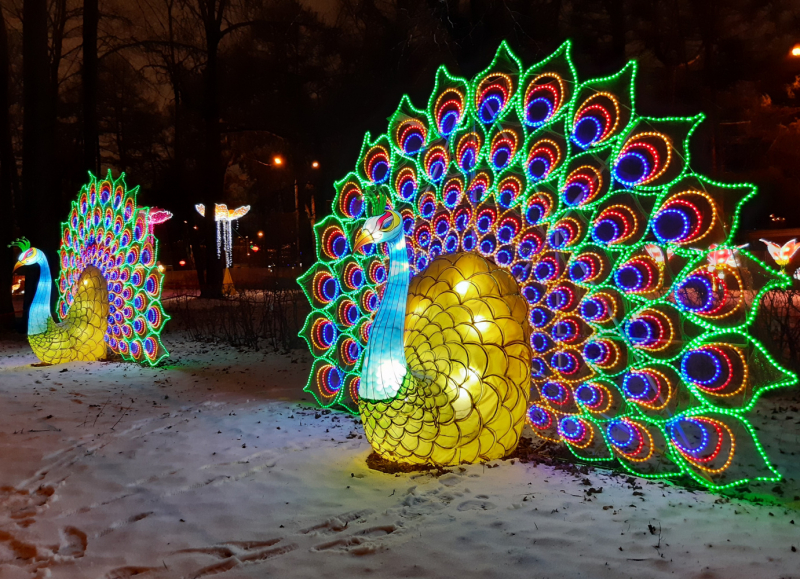 """Фестиваль """"Волшебных китайских фонарей"""" в Москве"""