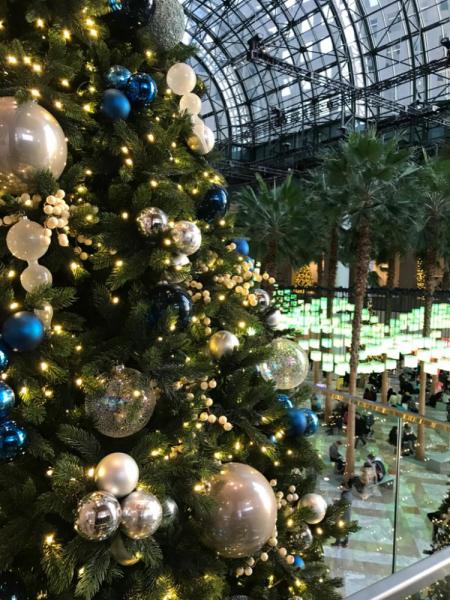 Восток и запад США в новогодние каникулы