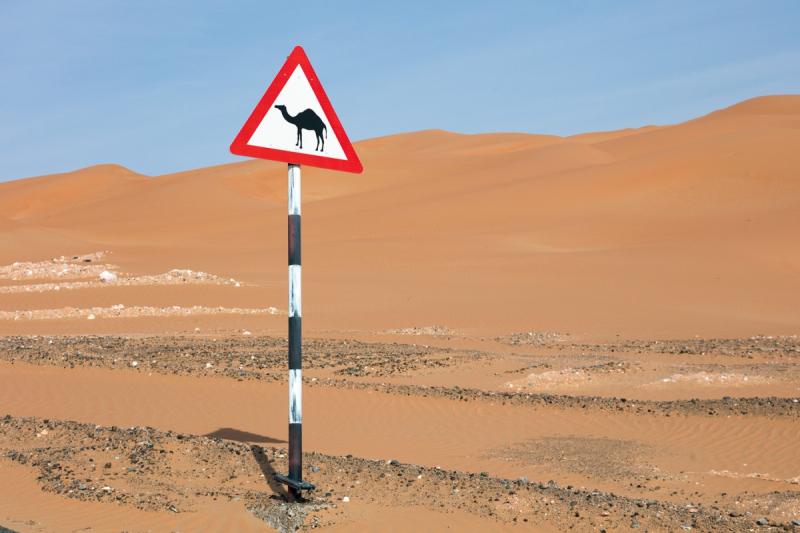 Зимний туринг вокруг эмирата Абу-Даби 2020
