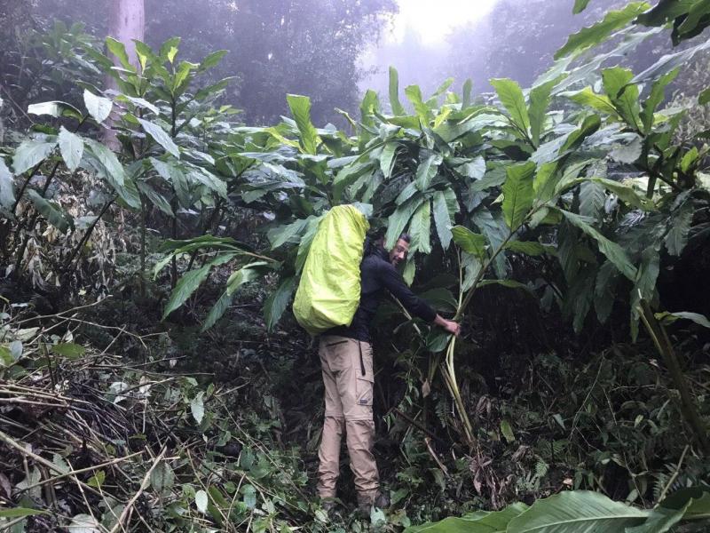 Маршрут 3-х дневного восхождения на Фансипан по джунглям
