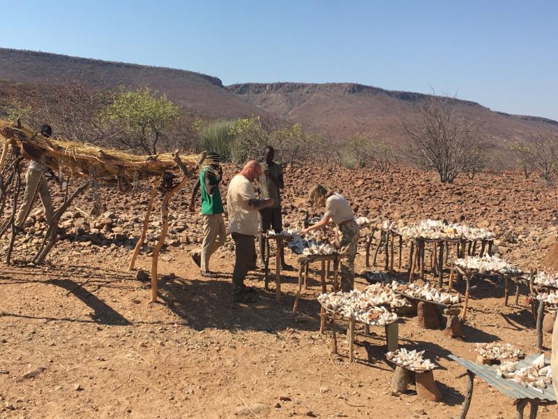 Путешествие в Намибию в формате экспедиции.