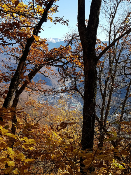 Десять дней в Сочи. Походы в горы и не только. Ноябрь 2019.