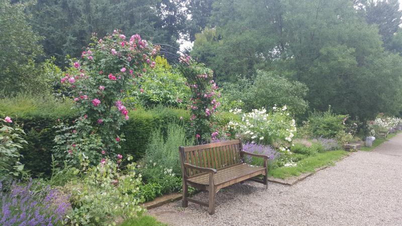 Прогулка по Пфюльпарку/Pfühlpark в Хайльброне/Heilbronn или небольшое Царство Роз