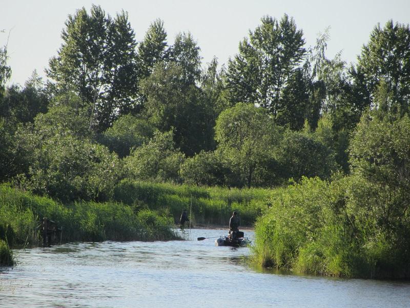 Вырваться из... Где-то в Ольгино. И Петровский пруд!