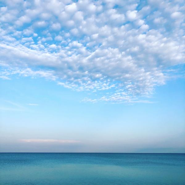 Крым июнь 2020. Почти ужас, но тепло и море. Плавание в стиле червя и прочие навыки выживания. Много фото котов!