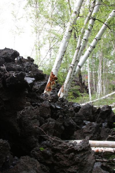Камчатка - край чудесный, ты самая красивая в России ( фотоотчет)
