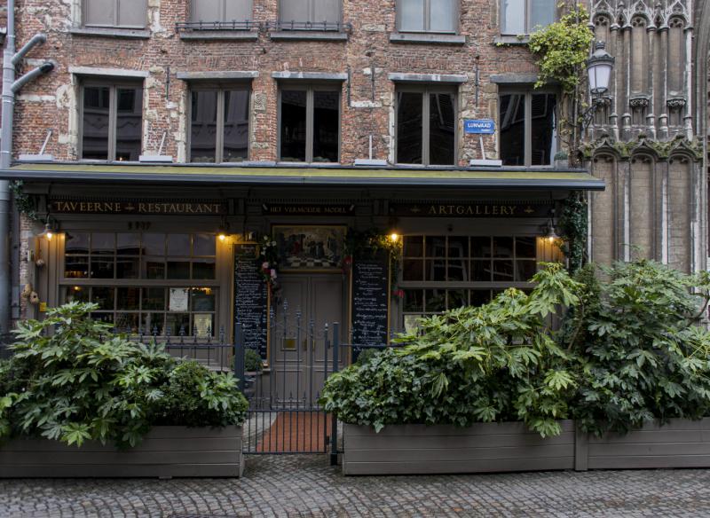 Бельгия, Нидерланды зимой 2020: поверхностно, но душевно