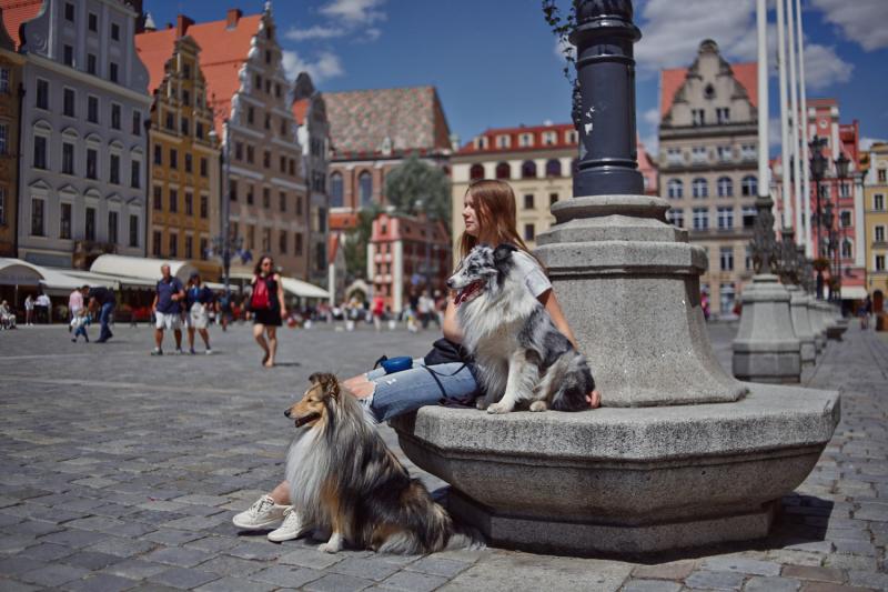 Июль 2019. По Европе с двумя собаками