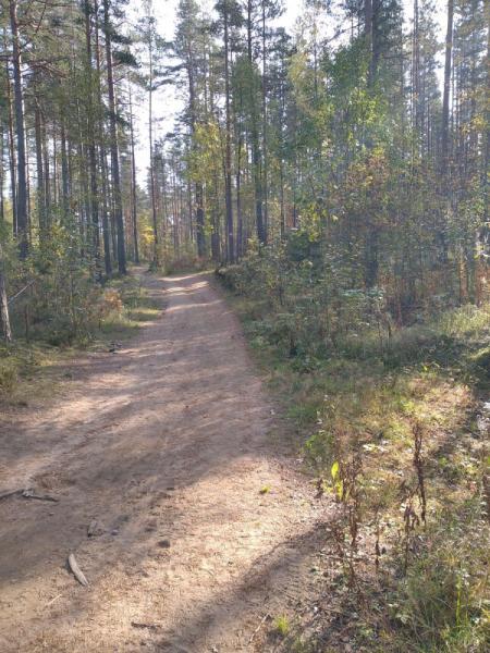 Пешком по государственному заказнику Ленинградской области
